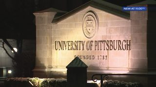 University of Pittsburgh staff accused of sexual harassment, gender discrimination