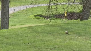 Local business confused with other Pa. golf course accused of kicking women out