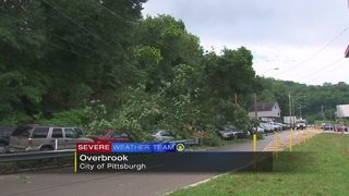 Residents evacuated, trees fall on cars after landslide in Overbrook