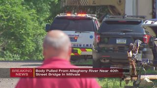 Body pulled from river near 40th Street Bridge