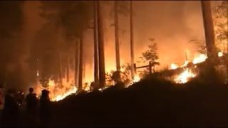 VIDEO: Forest fires near Yosemite and Sequoia grow