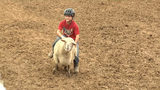 Kids try their turn at mutton busting at the Hookstown Fair in Beaver County. The fair runs through Saturday.