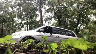 VIDEO: Bear accidentally locked in minivan