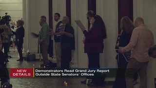 Demonstrators read grand jury report outside state senators