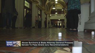 Demonstrators read grand jury report outside state senators