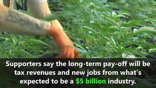 VIDEO: Marijuana legal in Canada