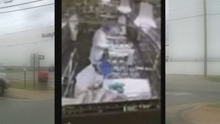 VIDEO: Food processing plant shut down after worker urinates on line