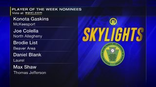 Skylights 2018: Vote For Player of the Week
