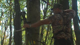 Tree stands more dangerous than guns for hunters