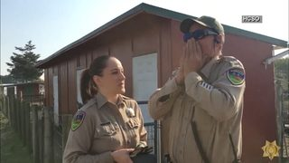 Colorblind deputy sees colors for the first time