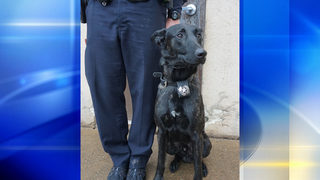 PHOTOS: Pittsburgh police hold graduation ceremony for K-9 officers