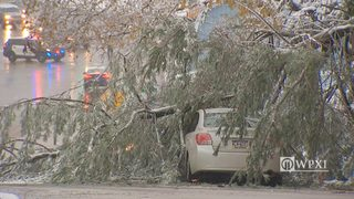 RAW VIDEO: Perry Highway closed by fallen tree