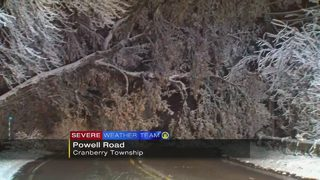 Tree falls across Powell Road in Cranberry Township