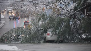 PHOTOS: Snow falls across the region causing trees to fall, power outages