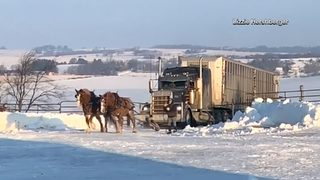 RAW VIDEO: Horses pull stuck semi up snowy driveway