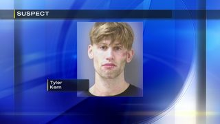 Man takes off in stolen car, leads police on chase after stealing television, investigators say