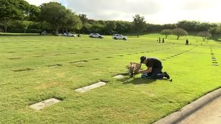 VIDEO: Devoted widower visits grave of wife daily