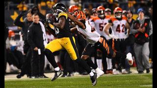 4e5b1664d5a Photos  Steelers do not advance to playoffs after Ravens win - (1 50