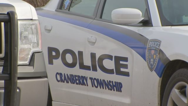 Cranberry Fraud Woman Accused Of Defrauding State Of Nearly