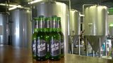 VIDEO: Craft brewer debuts cannabis-based lager