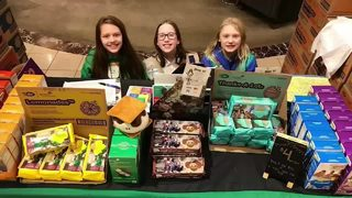VIDEO: Money stolen from Girl Scouts selling cookies