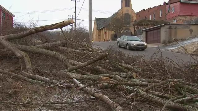 POWER OUTAGES: Strong winds knock out power, take down trees across
