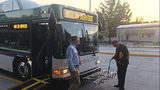 Sick days, driver shortage forcing transit authority to cancel routes