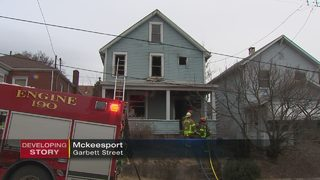 Dog killed in McKeesport house fire