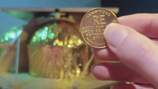 Pittsburghers vote to send Kennywood token to the moon