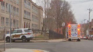 Police search for driver who hit student