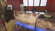 Sub Zero Nitrogen Ice Cream, where the franchise's signature product is frozen in two minutes by liquid nitrogen.