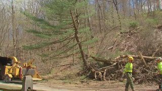 Landslide numbers down, but still impacting local communities