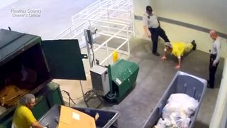 VIDEO: Inmate kicked by deputy for feeding bird cookie
