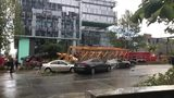 VIDEO: Four dead after crane collapse