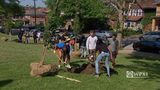 Allderdice HS students plant trees in honor of 11 Tree of Life shooting victims
