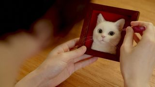 Hyper-realistic cat portraits help grieving owners