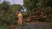 Trees down in Parker Township, Butler County after strong storms move through.