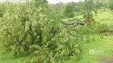RAW VIDEO: Drone footage of Parker Pike storm damage