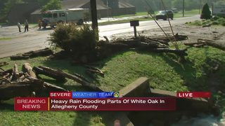 Heavy rain floods parts of White Oak