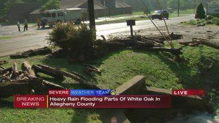 Heavy rain floods parts of White Oak