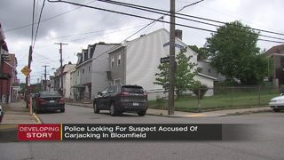 Man carjacks 2 women, takes off with 95-year-old inside