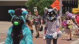 Furries descend on Pittsburgh for Anthrocon '19