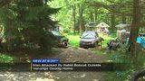 Rabid bobcat attacks local man at home