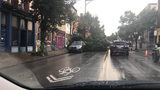 Tree down on Butler Street in Lawrenceville (Photo credit: Larry Gioia)