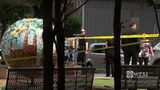 RAW VIDEO: Triangle Park stabbing