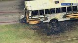 School bus driver killed stepping on live wires after crash